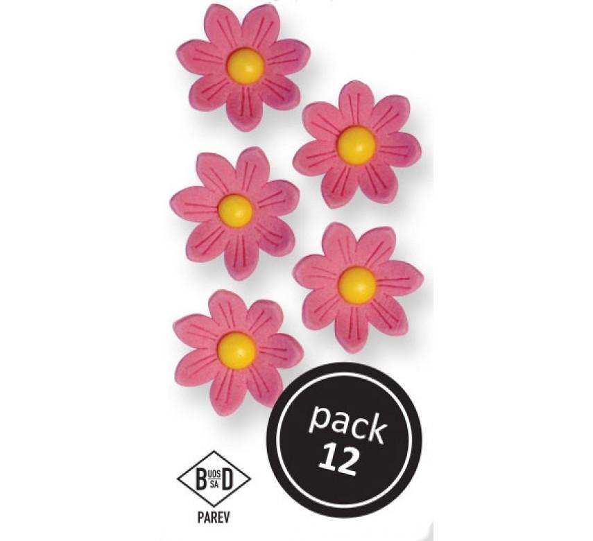 Pink Daisies (12/Pk)