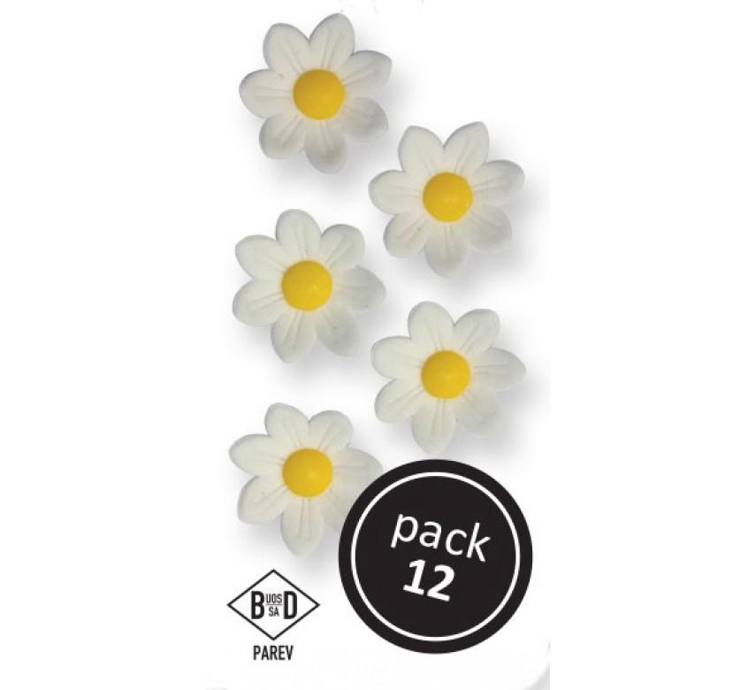 White Daisies (12/Pk)