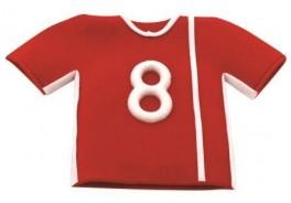 Sports Shirt Set of 2-20